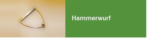 Hammerwurf