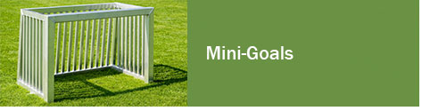 Mini Goals